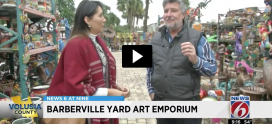 Barberville Yard Art Interview Channel 6 CBS Orlando